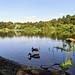 Fuglesangssøen