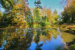 Autumn is still here.... (Tobi_2008) Tags: herbst autumn teich pond spiegelung reflection bäume trees sachsen saxony deutschland germany allemagne germania
