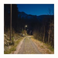 (Thorir Vidar) Tags: bergen ulriken svartediket tse45mmf28 norway thorir1911104323st2
