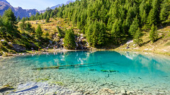 Crystal clear (SLpixeLS) Tags: switzerland arolla lagouille mountain swiss landscape alps forest wood bluelake lacbleu