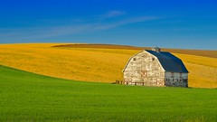 Barn and Fields 5830 C (jim.choate59) Tags: jchoate on1pics barn palouse field rural agriculture landscape minimalism summer wallawalla easternwashington
