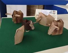 Bue muschiato - Musk Ox - Stefano Borroni (Stefano Borroni (Stia)) Tags: origami origamipaper origamicdo origamilove origamiart piegarelacarta arte folding foldingpaper papiroflexia carta paper animali origamicdo2019 bue buemuschiato muskox