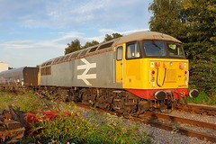 56098 Doncaster 24.08.19 (jonf45 - 5 million views -Thank you) Tags: train br britishh rail class 56 large logo grey 56098 doncaster roberts road october 2019