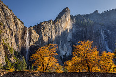 Fall at Bridalveil Fall (Jeff Sullivan (www.JeffSullivanPhotography.com)) Tags: national park fall colors photography workshop yosemitenationalpark yosemitevalley yosemitevillage mariposacounty california usa nature landscape travel night photographer canon eos 5d mark iv photo copyright 2019 jeff sullivan october november bridalveil yosemite