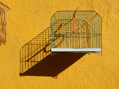 Yellow wall with a cage and its shadow in Puebla, Mexico (albatz) Tags: yellow wall shadow puebla mexico cage
