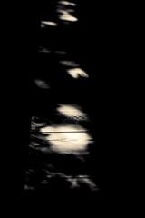 L'eau tonne - 14 (Stéphane Barbery) Tags: automne japan japon kyoto momiji 京都 日本