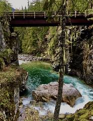 High Bridge (Ntvgypsylady) Tags: bridge water river wenatcheenationalforest pct pnw ncra trees boulders bushes grass rushingwater stehekinriver upriver mountain granite moss sky