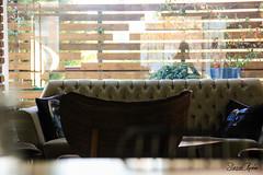 IMG_4624_edit (sinanaydin.net) Tags: saloon cafe bar longue armchair seat lounge hall salon