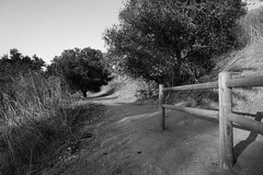 Junction Fence (Kelson) Tags: hahnpark losangeles hiking california trail fence trees hillside nature