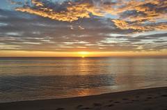Sunrise on the beach of El Campello - Amanecer en la playa de El Campello (En memoria de Zarpazos, mi valiente y mimoso tigre) Tags: sunrise sea seascape sun clouds sky beach amanece sol mar nubes playa amanecer mare spiaggia sole alba alicante campello nikon