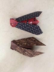 Cicala by Viviane Berty (Stefano Borroni (Stia)) Tags: origami origamipaper origamicdo origamilove origamiart piegarelacarta papiroflexia carta paper animali insetti arte art