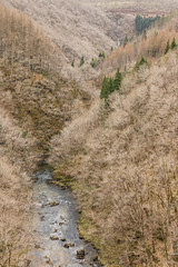 Valley (Future-Echoes) Tags: 4star 2018 devilsbridge march river trees valley wales water pontarfynach unitedkingdom