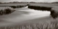 Marsh morning (baro-nite) Tags: baldheadisland marsh infrared pentax k5 lensbaby velvet iridientdeveloper panorama
