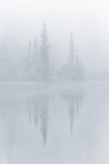 Faint Trees (~Arles) Tags: trees outdoors nature fog water reflection lake picturelake white monochrome landscape