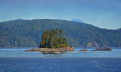Treasure Island Canoeing 2017 (matthias416) Tags: sky water sea island canoe blue vancouverisland canada britishcolumbia insel meer himmel blau kanu yourbestoftoday