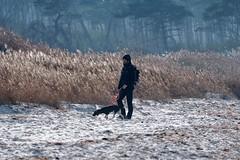 Stormy Weather | On the Coast (picsessionphotoarts) Tags: outdoor countryside darserort nikon nikonphotography nikonfotografie nikond850 norddeutschland herbst afsnikkor80400mmf4556gedvr ostsee balticsea fischlanddars dars autumn anderküste onthecoast stormyweather walkingthedog