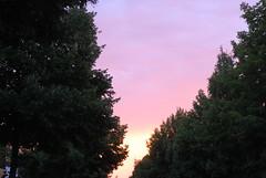Prächtig kommt der Herr, mein König (amras_de) Tags: morgen matí ráno morning mateno mañana goiz aamu matin maidin mattino rytas ochtend morgon manhã forenuin sonnenaufgang ortus solopgang sunrise orto päikesetõus eguzkiirteera auringonnousu leverdesoleil aurora solisortus sauletekis lekts zonsopgang solrenning soloppgang swit nascerdosol rasarit soluppgång