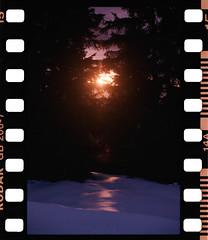 Sun (Kodak Gold 200) (mmartinsson) Tags: nikonf3 sprocketholes nikkor50mmf14 analoguephotography epsonperfectionv700 gb2007 scannegative digitalizascanningmask film 35mm kodak österrike wildschönau kodakroyalgold tyrolen