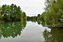 Belajske Poljice, Croatia - Green reflection in river Korana (Marin Stanišić Photography) Tags: croatia belajskepoljice karlovaccounty river korana green reflection nikon d5500