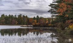 El Lago (JoseQ.) Tags: lago lake agua otoño autum hojas charca cielo sky reflejo arboles colores newhampshire