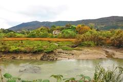 Día tritón en Onyarbi (eitb.eus) Tags: eitbcom 16599 g1 tiemponaturaleza tiempon2019 monte gipuzkoa hondarribia josemariavega