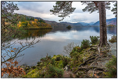Derwent Water, Cumbria (steve.gombocz) Tags: landscape cumbria westcumbria colour colours color natureisbeautiful lakedistrict out outandabout landscapephotos landscapephotography landscapephotographs water green nikkor reservoirs scenery landscapescenes mountains hills fells derwentwater nature lakescenes landscapepictures nicepictures flickrlandscapes lakes nikon nikond810 nikoneurope nikoncamera nikonfx nikon2401200mmf40 tree cloud reflection