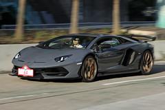 Lamborghini, LP770-4 Aventador SVJ, Hong Kong (Daryl Chapman Photography) Tags: t14421 lamborghini aventador svj italian hongkong china sar pan panning panningphotography canon 5d mkiv 70200l f28 auto autos automobile automobiles automobilephotography automotive automotivephotography