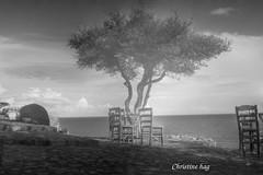 _MG_9603 (christine chagia) Tags: chaises chairs monochrome café
