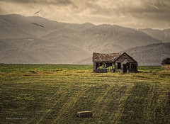 Empty House at The Bend in The Road (jackalope22) Tags: decay empty prairie house mountains wy wyoming