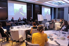 Regional workshop on rural migration in Europe and Central Asia (13-14 Nov. 2019, Budapest) (faoreu) Tags: hungary budapest migration conference fao workshop intersectoral
