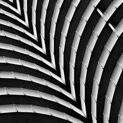 Dramatic Curves (2n2907) Tags: abstract architecture glass office building windows skyscraper graphic design geometry geometric lines graphical curves blackwhite bw contrast stripes striped apartment modern