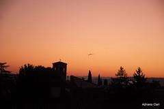 _DSC5885 (Adriano Clari) Tags: alba sunrise mattina morning colori colours rosso red adriano clari