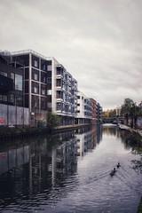 From Birmingham to Camden Town (marc.barrot) Tags: grandunioncanal elmvillage x100f urbanlandscape canal nw1 london camden regent'scanal towpath jubileewalkway