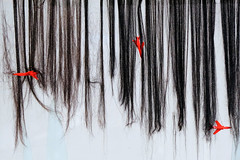 FDP (9) (jurek d. (Jerzy Durczak)) Tags: hair planes airplanes hasior