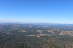View from Gods Window (Rckr88) Tags: mpumalanga southafrica south africa view from gods window viewfromgodswindow godswindow greenery green grass trees tree travel travelling nature naturalworld outdoors mountains mountain