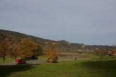 Großer Alpsee (IV) (dididumm) Tags: lake water road street view scenery fall autumn herbst landschaft aussicht strase wasser see groseralpsee immenstadt allgäu bavaria bayern germany