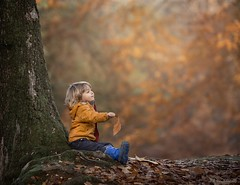 Magical autumn! (Aga Wlodarczak) Tags: agawlodarczak agawlodarczakphotography uk forest autumn colours canon6d canoneos6d canon 135mmf2 135mm child children childportrait childphotography childhood naturallight berkshire fineart