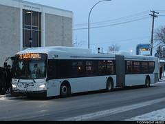 Winnipeg Transit #384 (vb5215's Transportation Gallery) Tags: winnipeg transit 2019 new flyer xd60 xcelsior