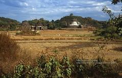 Mrauk U, stupas in the landscape (blauepics) Tags: myanmar birma burma southeast asia südostasien 1996 myauk mrauk u mrauku rakhine arakan state province provinz burmese birmanen arakanese htukkant thein htukkanthein temple buddhism buddhismus king könig min phalaung religion stupa bell glocke hill hügel clouds wolken history geschichte landscape landschaft rural ländlich rice fields reisfelder lemyethna laymyethna saw mon