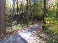 ** Parc Jean-Drapeau (Mtl) ** #2 (Impatience_1) Tags: parcjeandrapeau montreal parc park sentier path arbre tree automne autumn fall impatience supershot coth coth5 sunrays5 vert