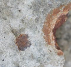 DSC_9027 (1) (jgdav) Tags: ancient quartz pigment ochre image macro blue pictograph petroglyph america rock artifact