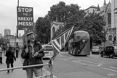 STOP the Brexit Mess (JuliSonne) Tags: streetphotography people publicopinion demonstration politics london protester