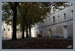 L'église de l'abbaye aux Dames (christian_lemale) Tags: abbaye dames abbayeauxdames saintes nikon z6 ladies abbey