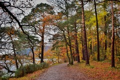 Friars Crag (Nige H (Thanks for 25m views)) Tags: nature landscape autumn lakedistrict trees fall cumbria england