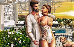 [ 📷 - 173 ] (insociable.sl) Tags: luxury oriental plant sunrise sunset house villa animal pet dog labrador white gold sensual sexy girl woman female man male boy bae couple girlfriend edit sl secondlife magnificient amias