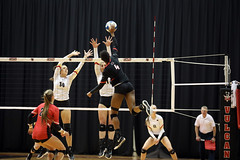 20191112-volleyball-vs-seton-hill-HOWARD-7K0A0377