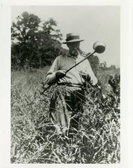 Anglų lietuvių žodynas. Žodis yellow-fever mosquito reiškia geltona-karščiavimas uodų lietuviškai.