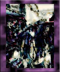 La brujita (seguicollar) Tags: art arte artedigital texturas virginiaseguí imagencreativa photomanipulation filterforge escaparate bruja sombrero tienda