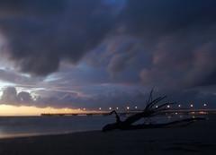 Tronco d'albero in spiaggia (Darea62) Tags: beach bridge clouds sky sea sunset nature landscape streetlights trunk longexposure bluehour travel autumn november tramonto cielo mare marinadimassa toscana