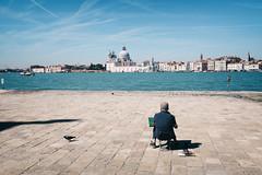 Forza Venezia !!! (Roberto Spagnoli) Tags: venezia venice italy sea painter pittore pigeon fotografiadistrada streetphotography colorstreet actuality flood alone